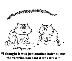 www.cartoonstock.com used with permission